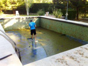 плесень в бассейне