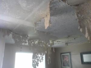 Как смыть краску с потолка. Альтернатива пылесосу профессиональная смывка. Рекомендации
