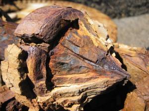 Процесс коррозии металлов. Теория и практика: описание